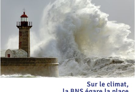 FLASH info :  Les Derricks de la BNS – 24 avril 2020
